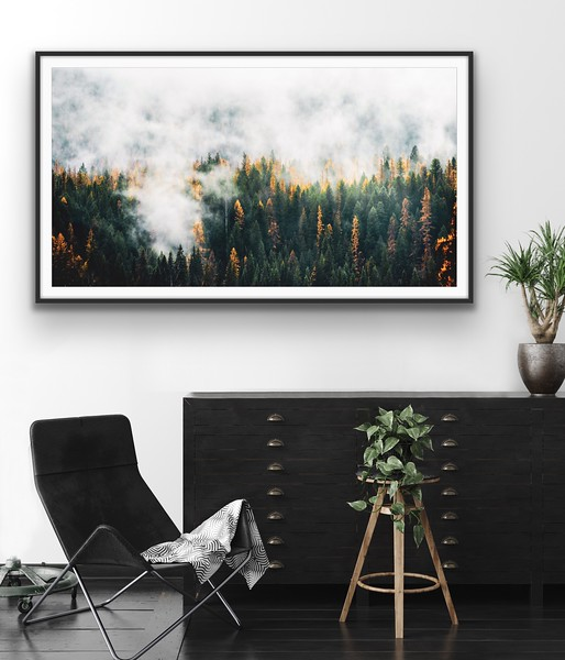 'Fog & Forest'  Fine Art Print Framed/Unframed