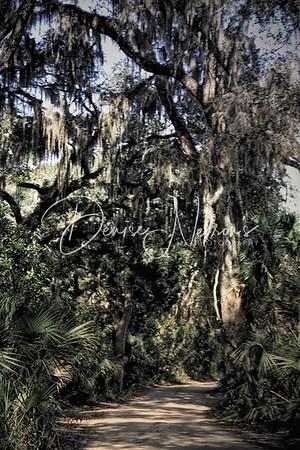 Kingsley Plantation , Jacksonville FL