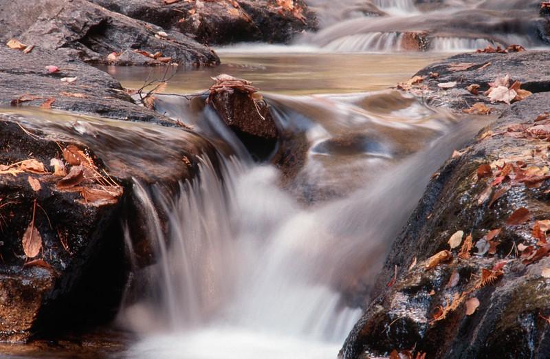 Maine Stream.jpg
