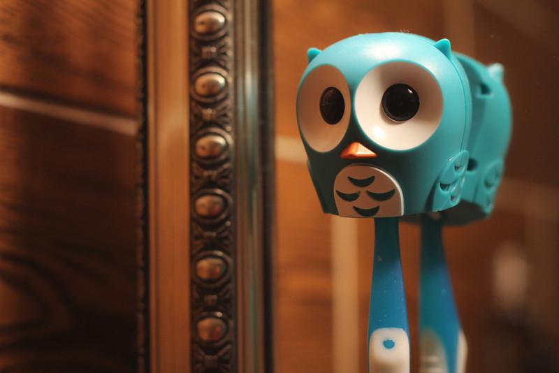 11/18/2012 - Hoo hoo hoooo!