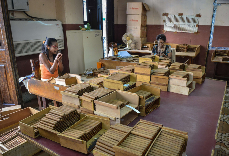 . Workers put cigars in boxes, on February 27, 2014 at the H. Upmann cigar factory in Havana. The production of Cuban cigars experienced an 8% growth in 2013 adding 447 million dollars to the Cuban economy. The XVI Havana Cigar Festival is running in Cuba with the presentation of the best Cuban cigars. (ALBERTO ROQUE/AFP/Getty Images)