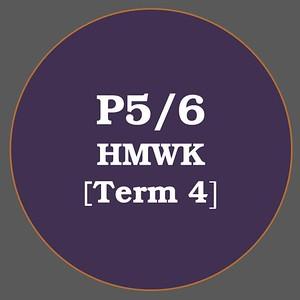 P5/6 HMWK T4