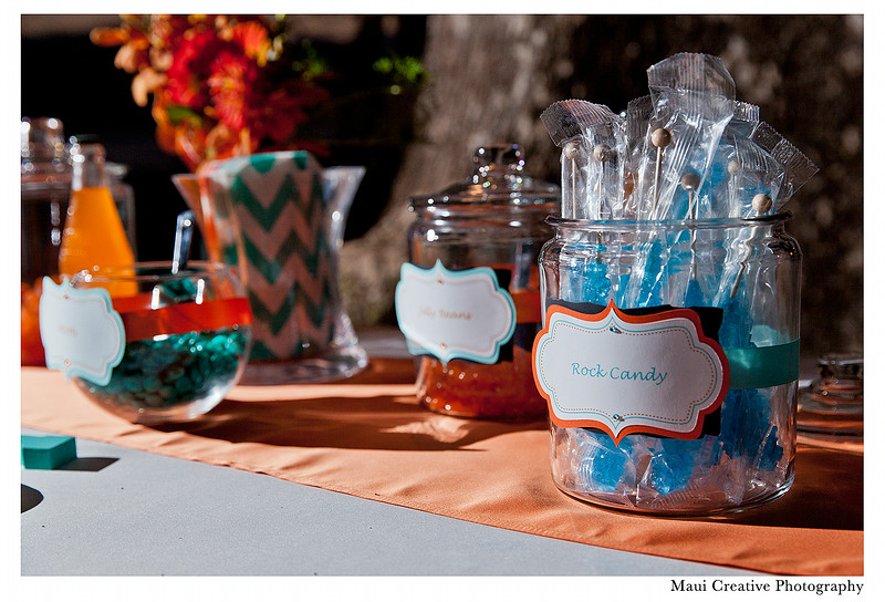 Maui_Wedding_Photographers_Olowalu_Plantation_House_541.jpg