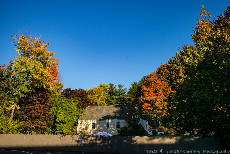 2016-10-19_Fall_Colors@MeridenCT_15.jpg