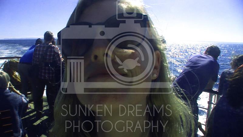 Lundy Island Edit.Still016.jpg