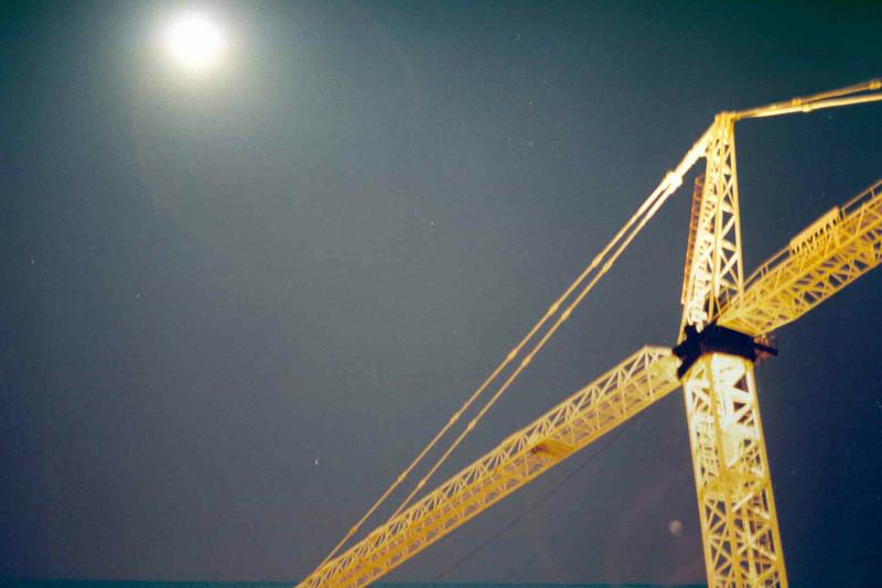 Crane with Moon.jpg