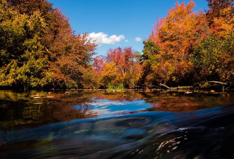 Connetquot River State Park Preserve.jpg