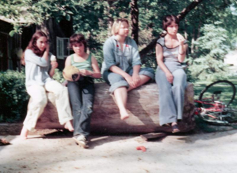 1978 michelle tina laura edda de pere wi urbandale