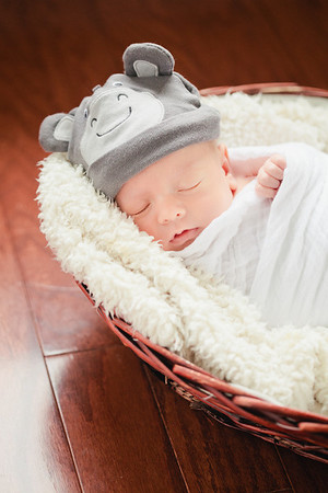 Fischer | Newborn & Family Session