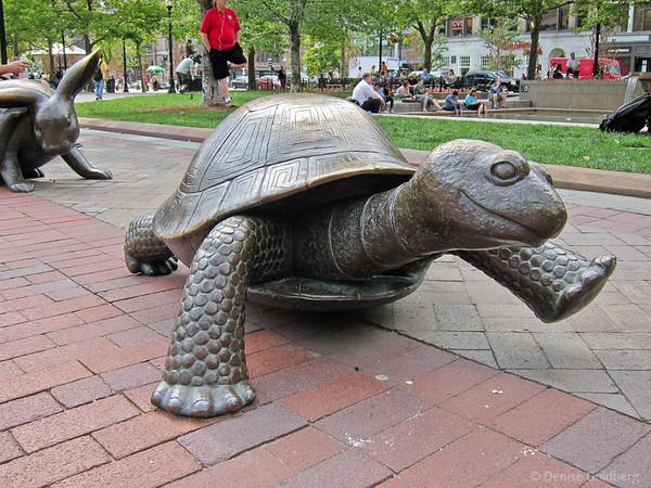 A taste of Boston - 2012