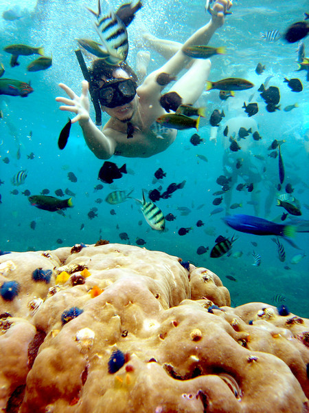 Snorkeling - Will.jpg