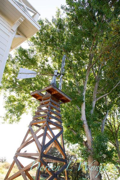 Historic windmill windpump_1748.jpg
