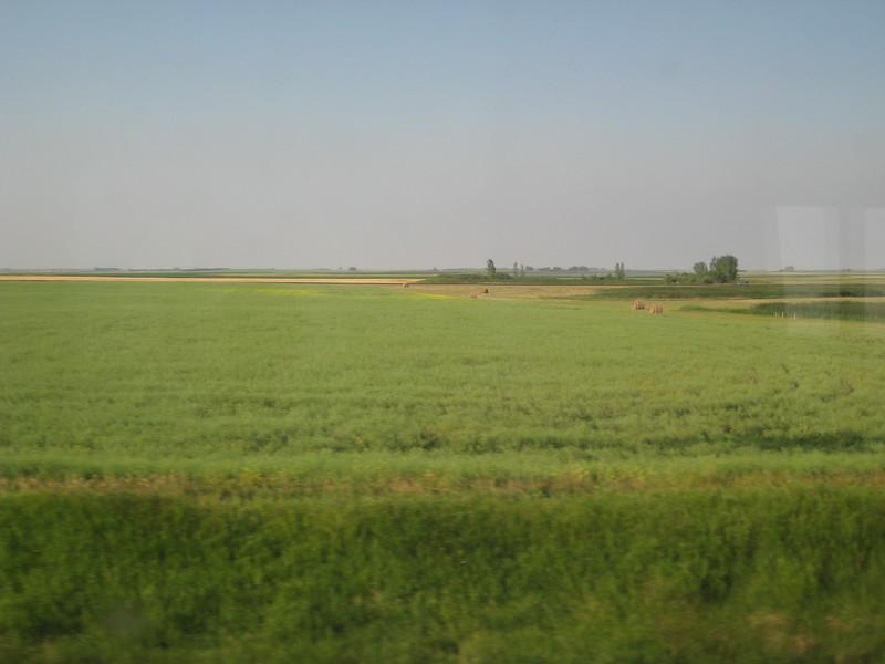 2008-07-24-YOCAMA-Montana_1762.jpg