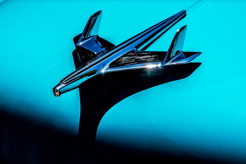 Petaluma Cars-0251.jpg
