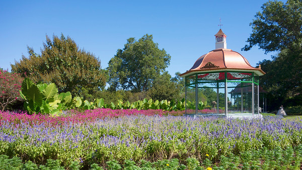 2016 Dallas Arboretum Autumn