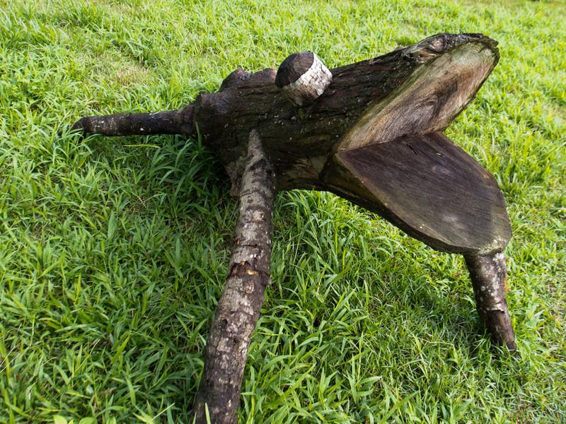 Log Frog
