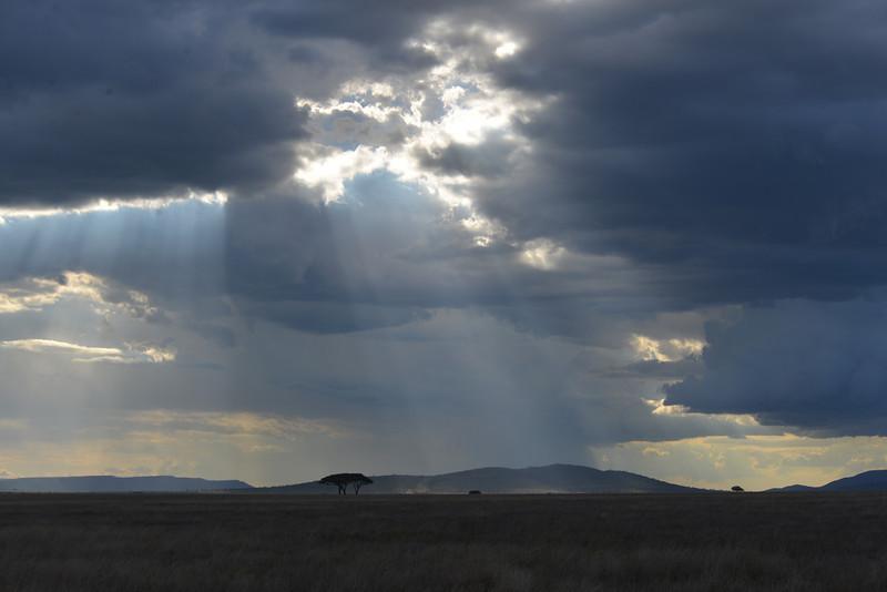 East Africa Safari 352.jpg