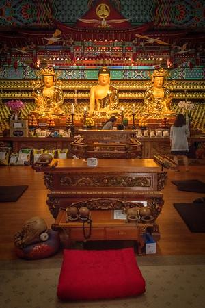 2018-05-22 RAS Buddha's Birthday