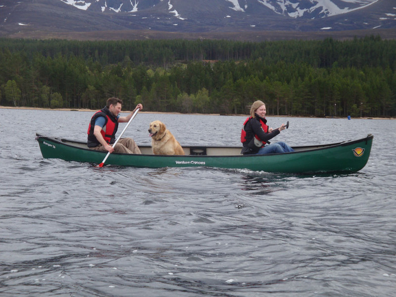 The canoeing dogs, at least, certainly enjoyed it!
