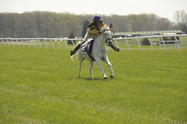 Second Race - Medium Pony