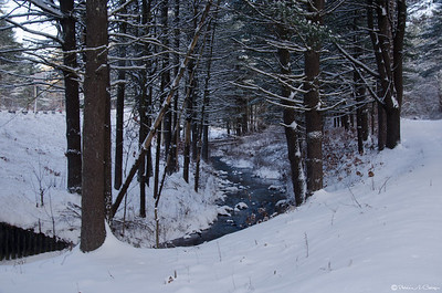 Winter Quabbin 2013-2014