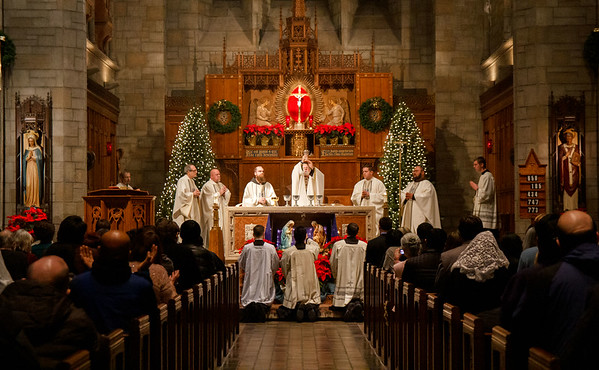 Cardinal celebrates New Year's Mass 2019