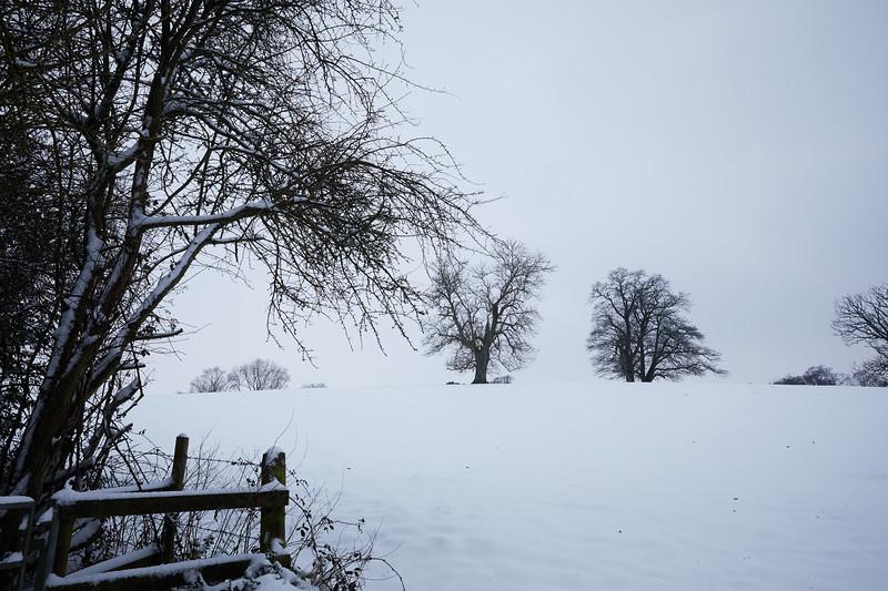 Snow Mar18 08.jpg