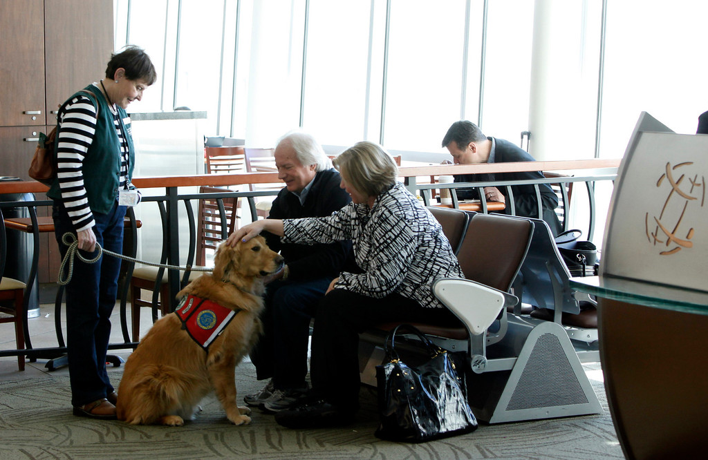 """. Kyra Hubis and her \""""therapy dog\"""" Henry James visit Brian and Peggy Schram of Fort Collins, Co., who were preparing to fly out of Mineta San Jose International Airport in San Jose, Calif. on Monday, Jan. 28, 2013.  (Karl Mondon/Staff)"""