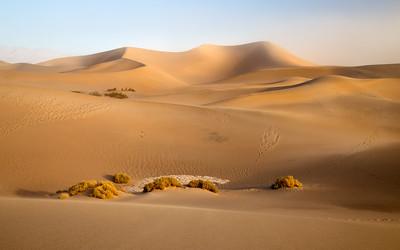 USNP Death Valley