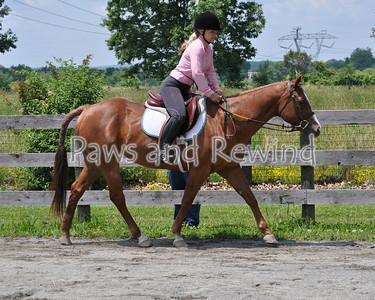Class 7B: Volunteer Equitation W/T/C