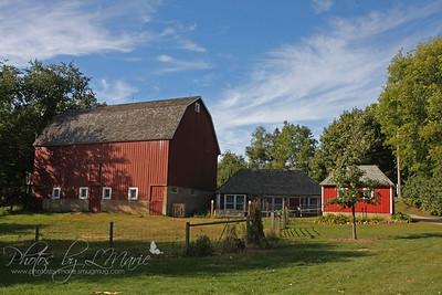 Minnesota Barns