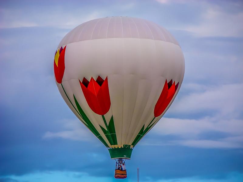Balloon Fiesta 2006 152-16.jpg