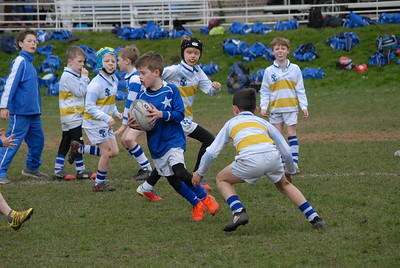 St Mary's v Willow Park Blitz
