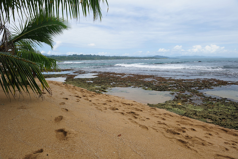 costa_rica_beach_footsteps.jpg