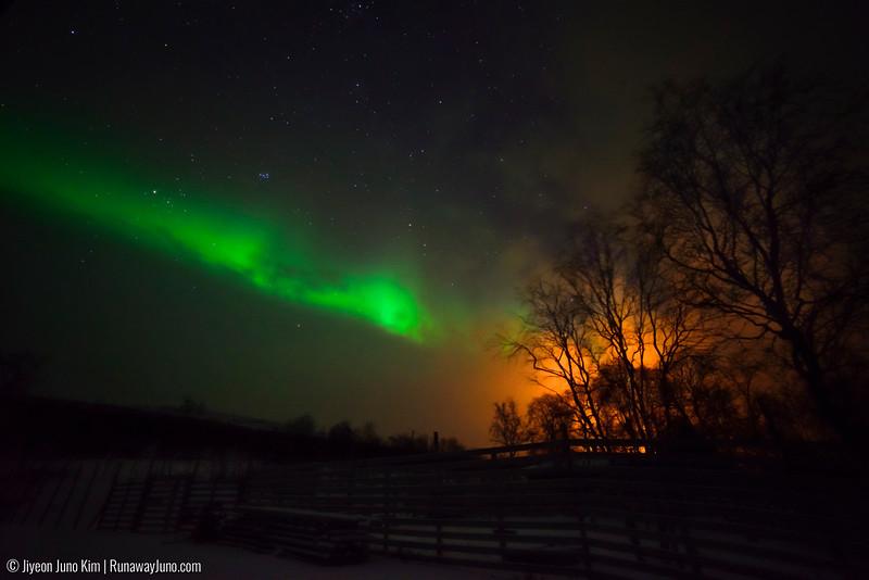 Nov.14_Northern Lights-6107713.jpg