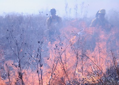 Flower Mound Controlled Burn