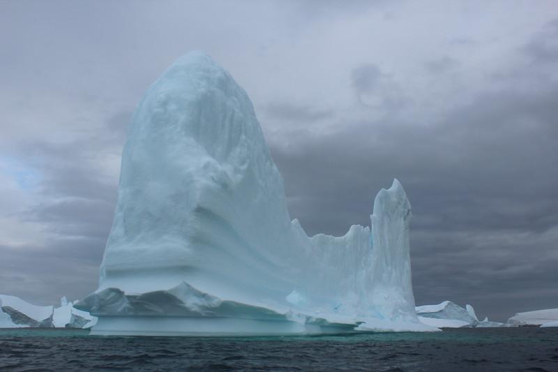 Antarctica 227.JPG