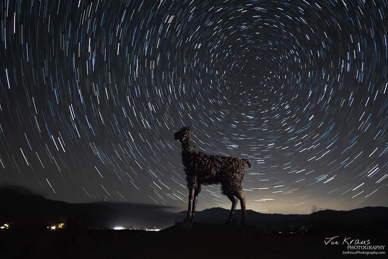 Lama - IMG_1133 - Star Merge.jpg