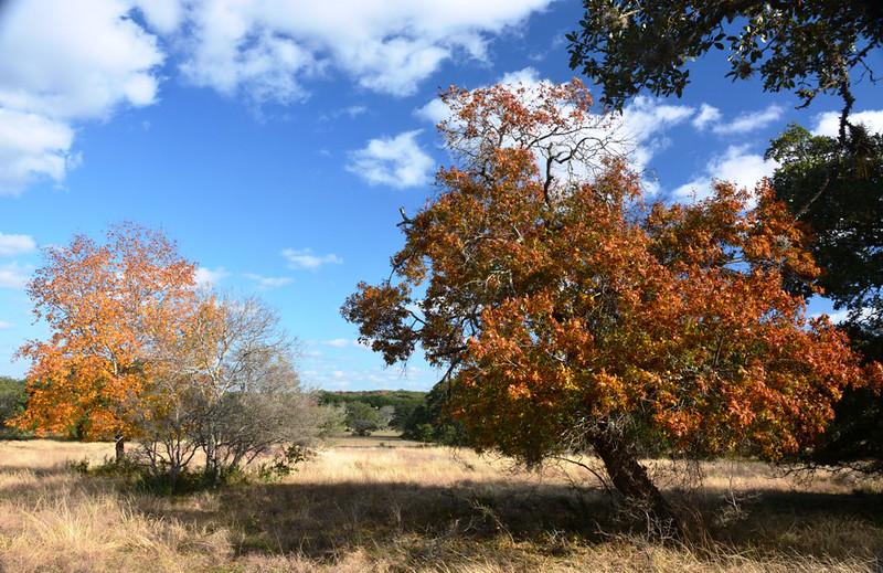 Autumn at the Eads Ranch - 016a.jpg