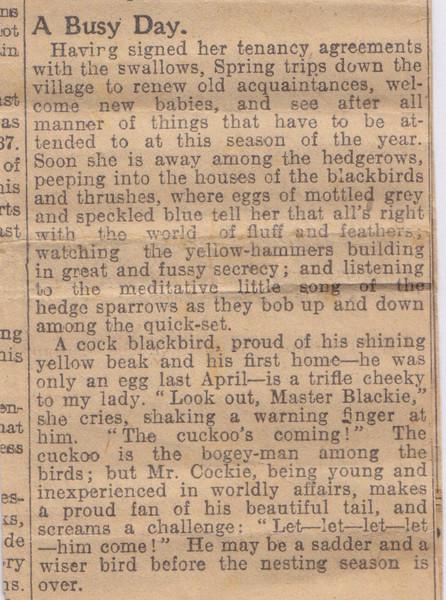 Newspaper cutting part 2