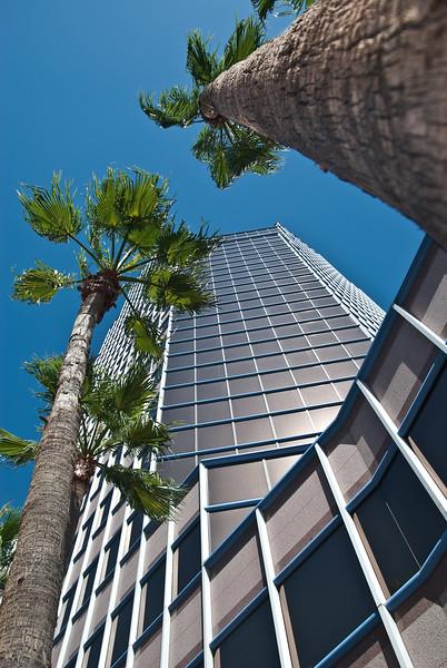 Tucson, Az - Oct 1, 2009-0002.jpg