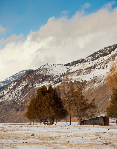 Shabby Yellowstone Barn
