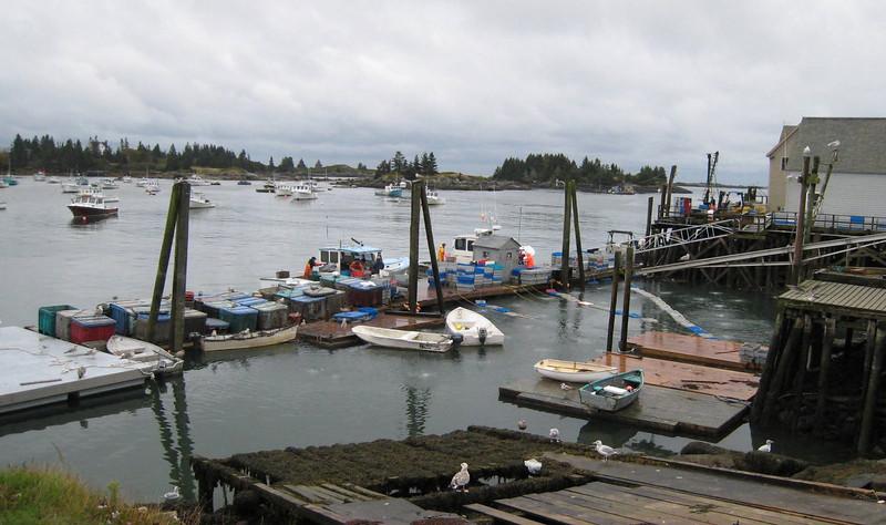 Lobster fishermen at work - Vinalhaven. Maine