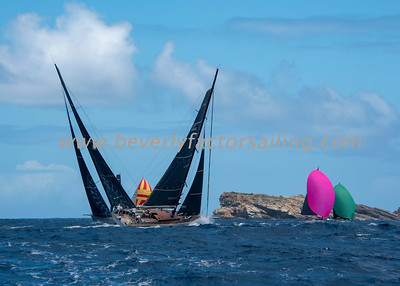 ARARA - Under Sail