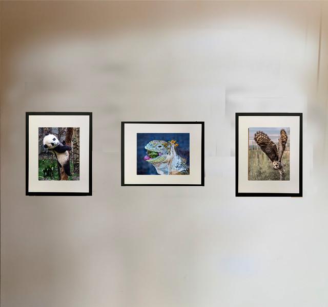 26__ 3 Hallway Walls 012--IMG_2573 copy copy.jpg