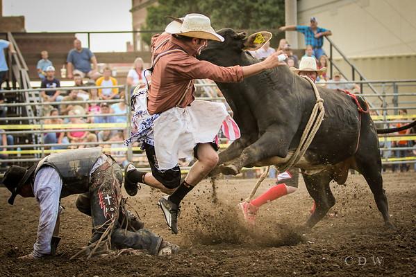 Bull Blowout 2013