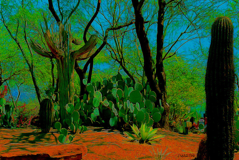desert tones 5-3-2009.jpg