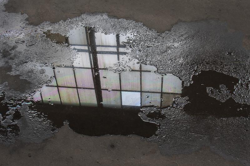 Sandra_Wescott_Window Reflection.jpg