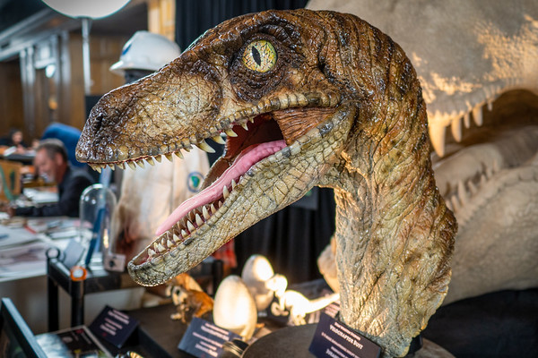Dino Fest 2019