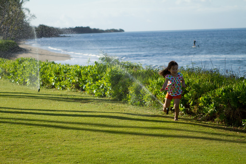 Hawaii2012-1791.jpg